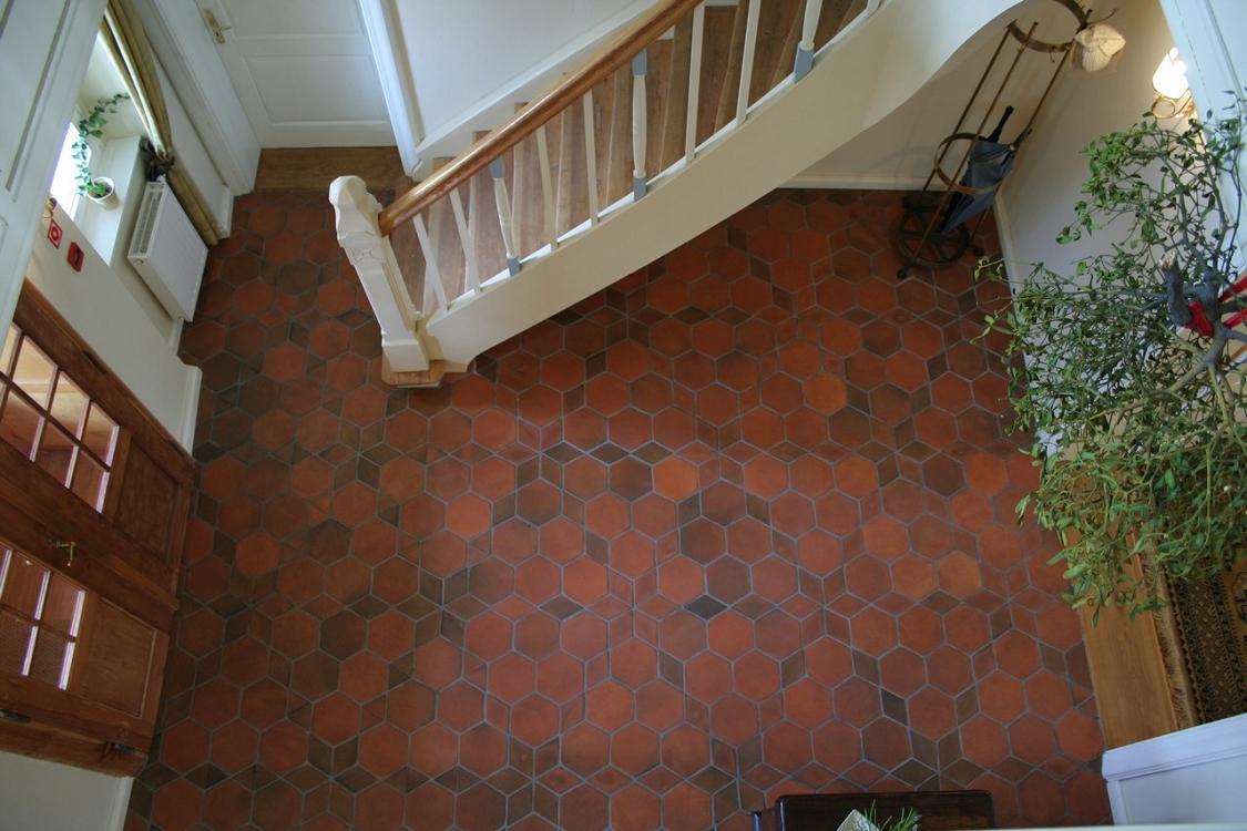 Terracotta hexagon floor tiles columbialabelsfo hexagonal floor tiles terracotta dailygadgetfo Images